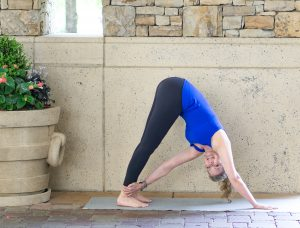Downward Dog Twist Pose